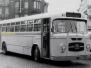 Auto Miesse bussen