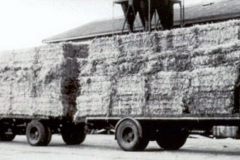 2012-01-07 daf vracht stro daf bij Phoenix Veendam