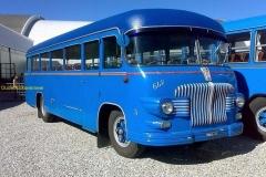 Fiat bussen
