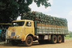 FNM trucks