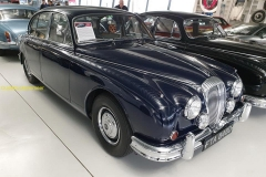 2020-02-14 Jaguar -75