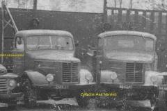 2013-01-13-Kromhout-van-DSevers